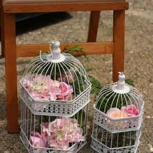 birdcages in white